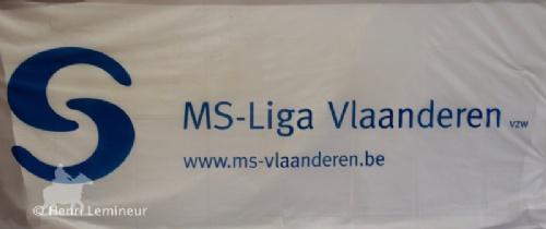 2017MSLiga006vlagMS